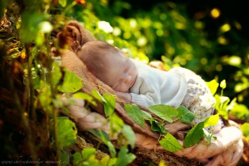 Neugeborenenfotos in Buxtehude Outdoor-11