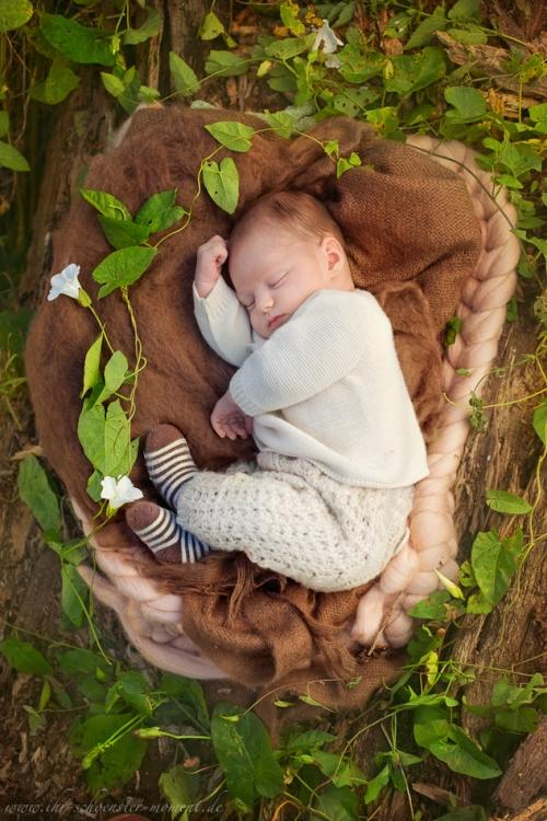 Neugeborenenfotos in Buxtehude Outdoor-13