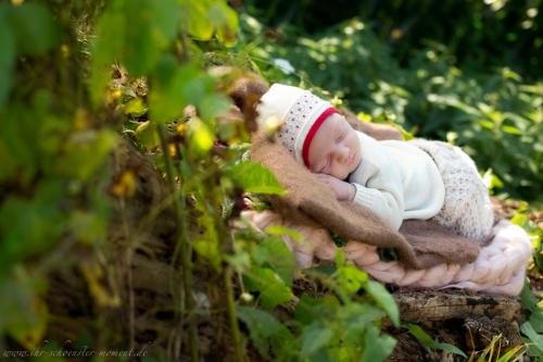 Neugeborenenfotos in Buxtehude Outdoor-5