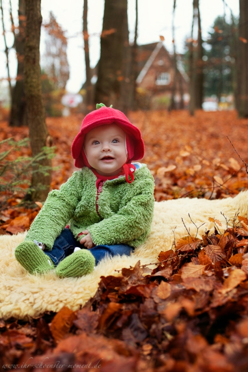 Babyfotos im Herbst Buxtehude-11