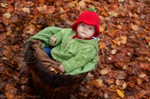 Babyfotos im Herbst Buxtehude-6