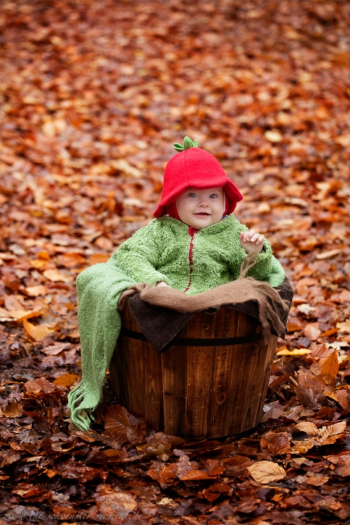 Babyfotos im Herbst Buxtehude