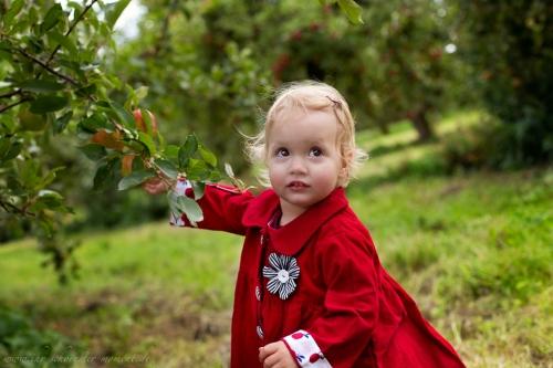 Kinderfotos auf dem Apfelhof-11
