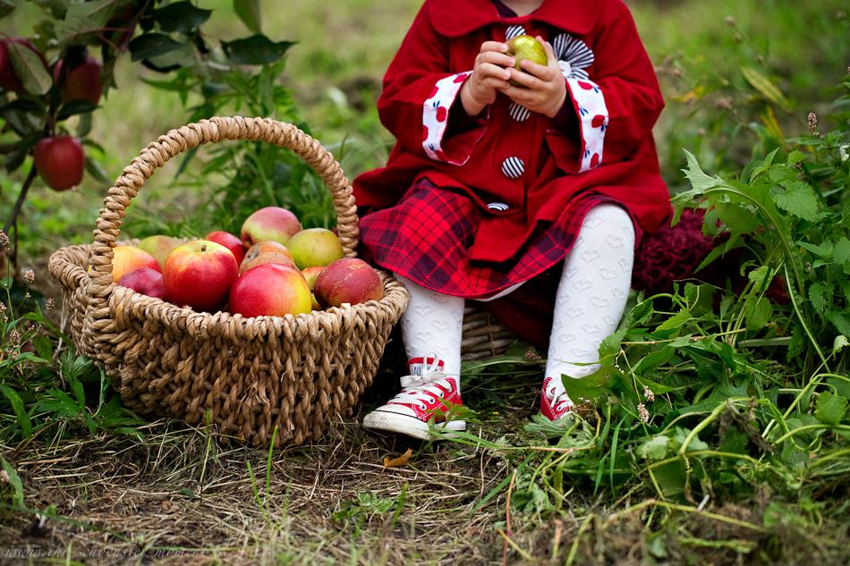 Kinderfotos auf dem Apfelhof-14
