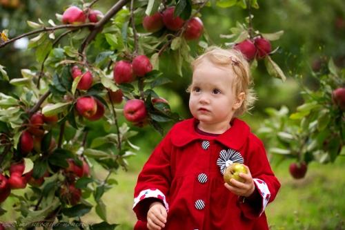 Kinderfotos auf dem Apfelhof-15