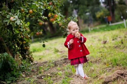Kinderfotos auf dem Apfelhof-16