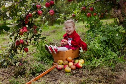 Kinderfotos auf dem Apfelhof-20