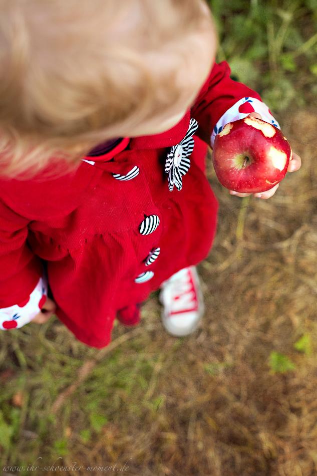 Kinderfotos auf dem Apfelhof-4