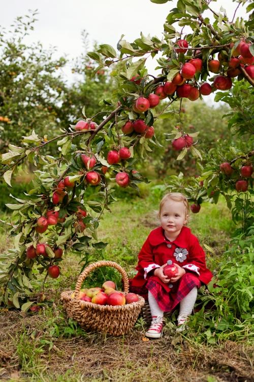Kinderfotos auf dem Apfelhof-6