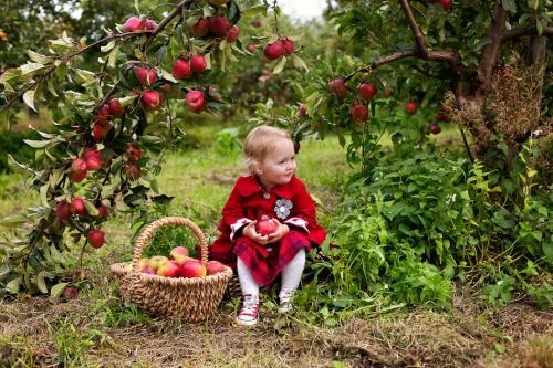 Kinderfotos auf dem Apfelhof-7