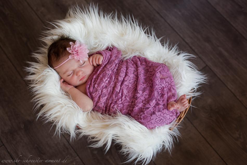 Neugeborenenfotos Geschwisterfotos Familienfotos_-11