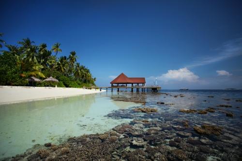 Reisefotografie Malediven Ebbe