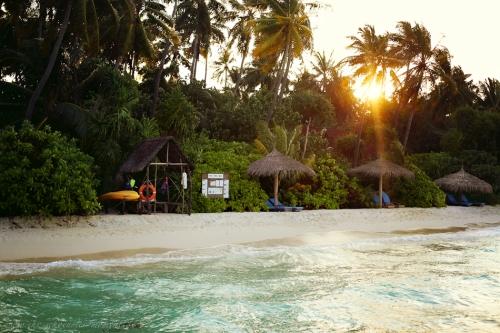 Reisefotos Malediven-25
