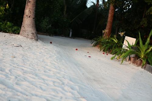 Reisefotos Malediven-29