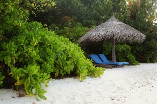Reisefotos Malediven-41
