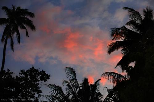 Reisefotos Malediven-44
