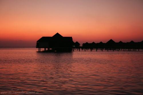 Reisefotos Malediven-5-2