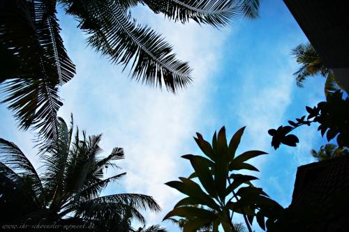 Reisefotos Malediven-63