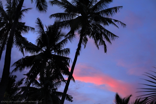 Reisefotos Malediven-7