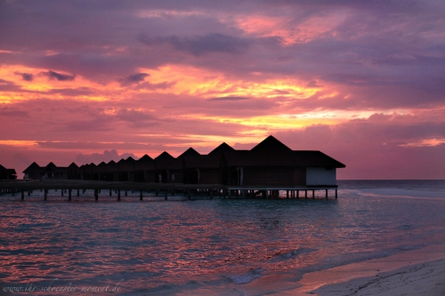 Reisefotos Malediven-9