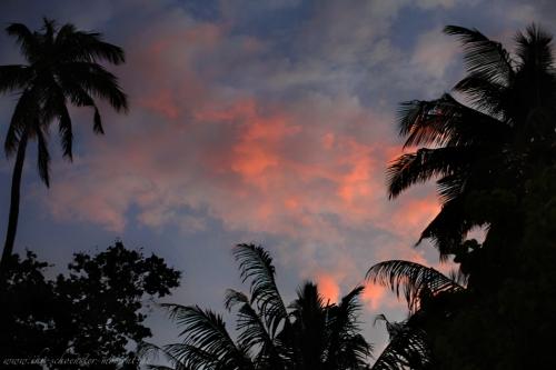 Reisefotos Malediven Robinson Club-10