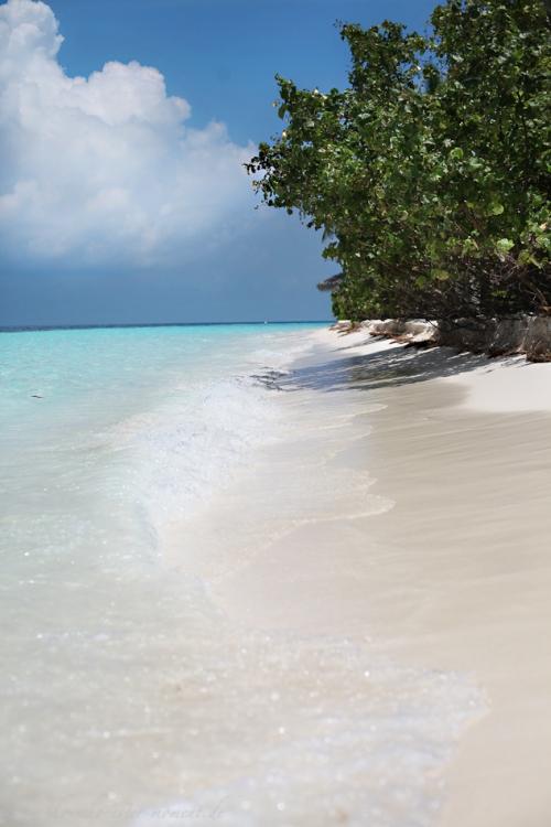 Reisefotos Malediven Robinson Club-36