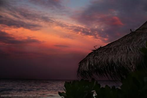 Reisefotos Malediven Robinson Club-8