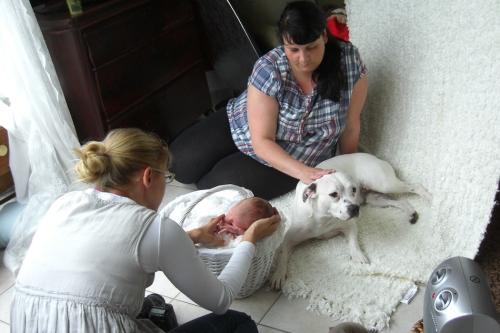 Neugeborenenbilder mit Hund-7