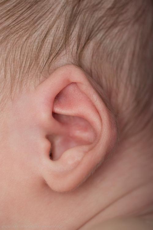 Natürliche Neugeborenenfotografie Schwarzwald-46