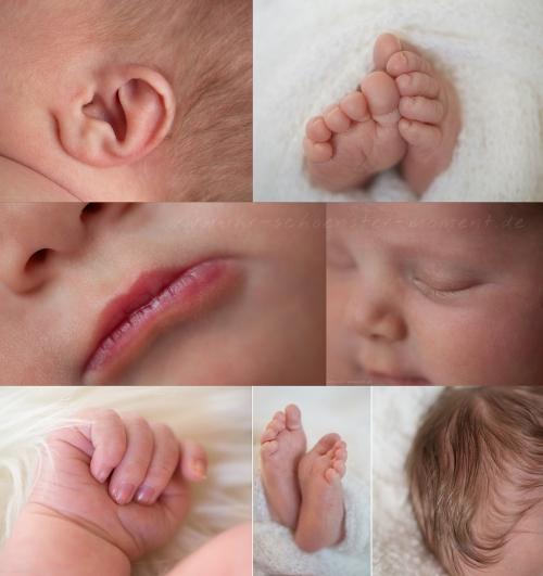 Neugeborenenfotos Greta Hamburg 1
