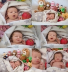 Neugeborenenfotos Greta Hamburg