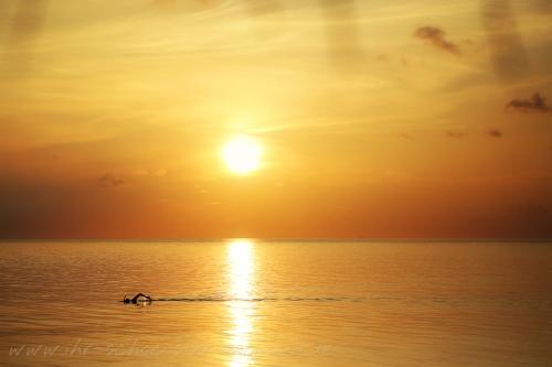 Reisefotografie Malediven 2015 Robinson-18