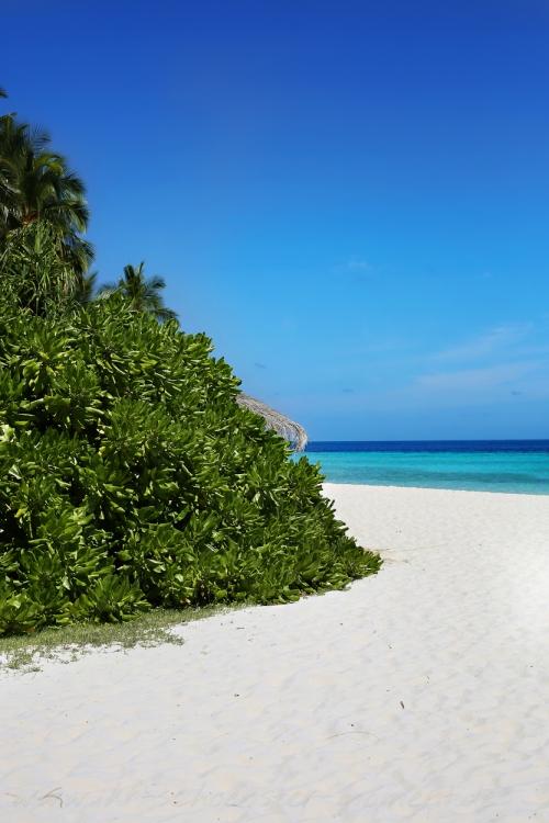 Reisefotografie Malediven 2015 Robinson-27