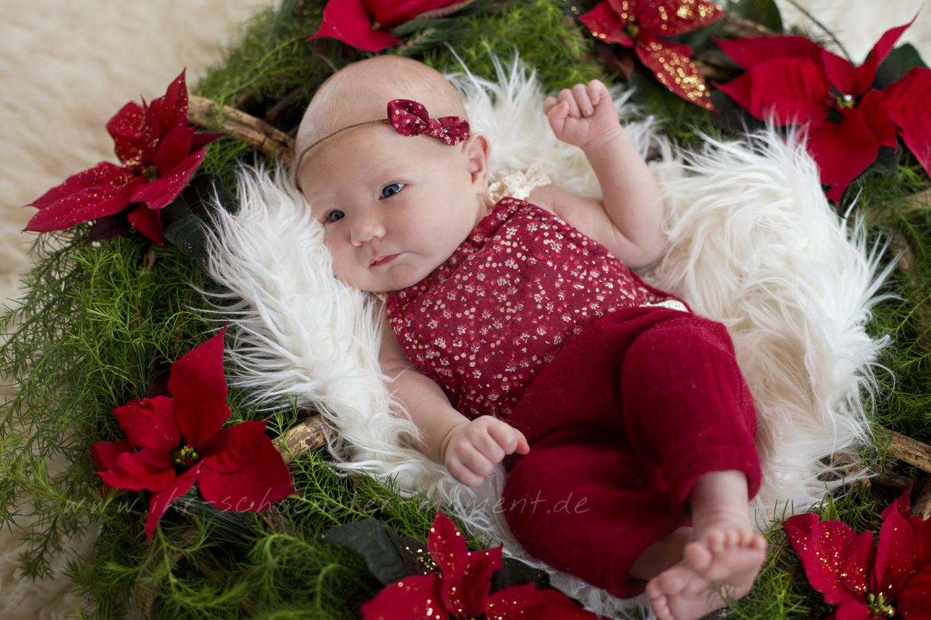 frohe-weihnachten-2017