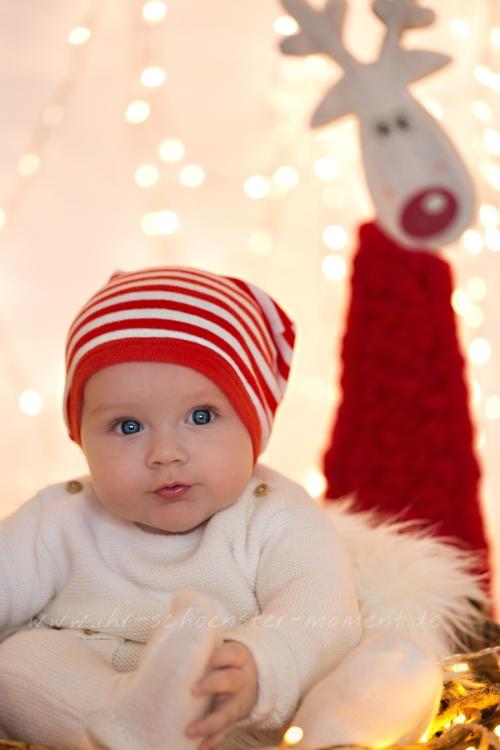 frohe-weihnachten-noah
