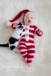 frohe weihnachten herbert und adam